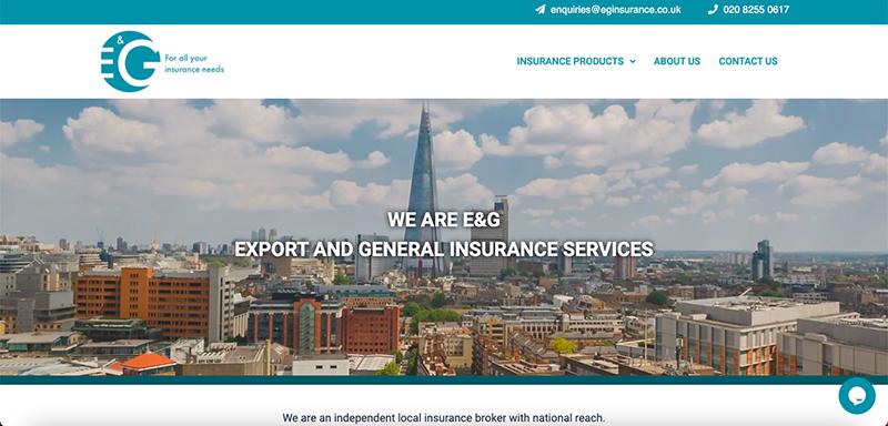 EG Insurance Website Preview