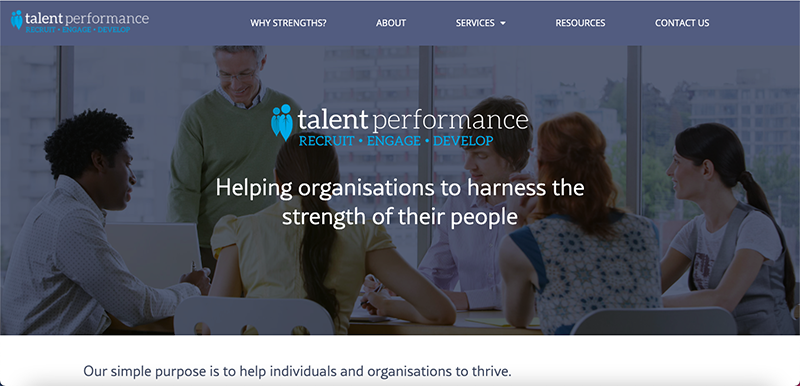 Talent Performance Website Preview